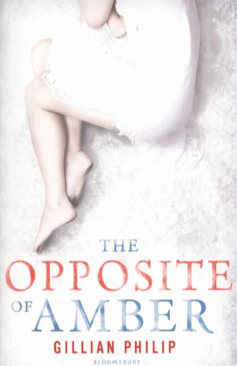 Book review: The Opposite of Amber